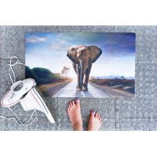 Rohožka - Elephant, 45x75 cm (1+1 zdarma)