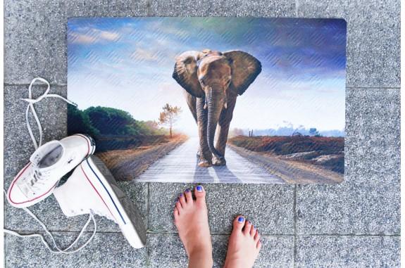 Rohožka - Elephant, 45x75 cm