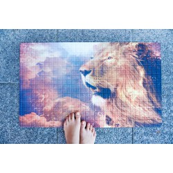 Rohožka - Lion, 45x75 cm (1+1 zdarma)